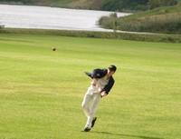 cricket-fielding.jpg