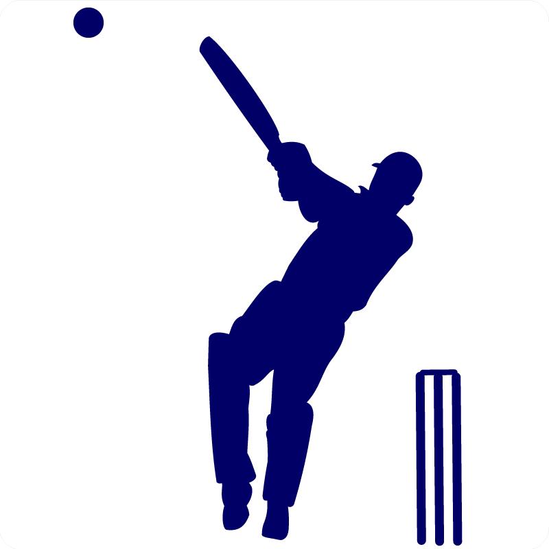 Cricket-hit-wall-sticker1